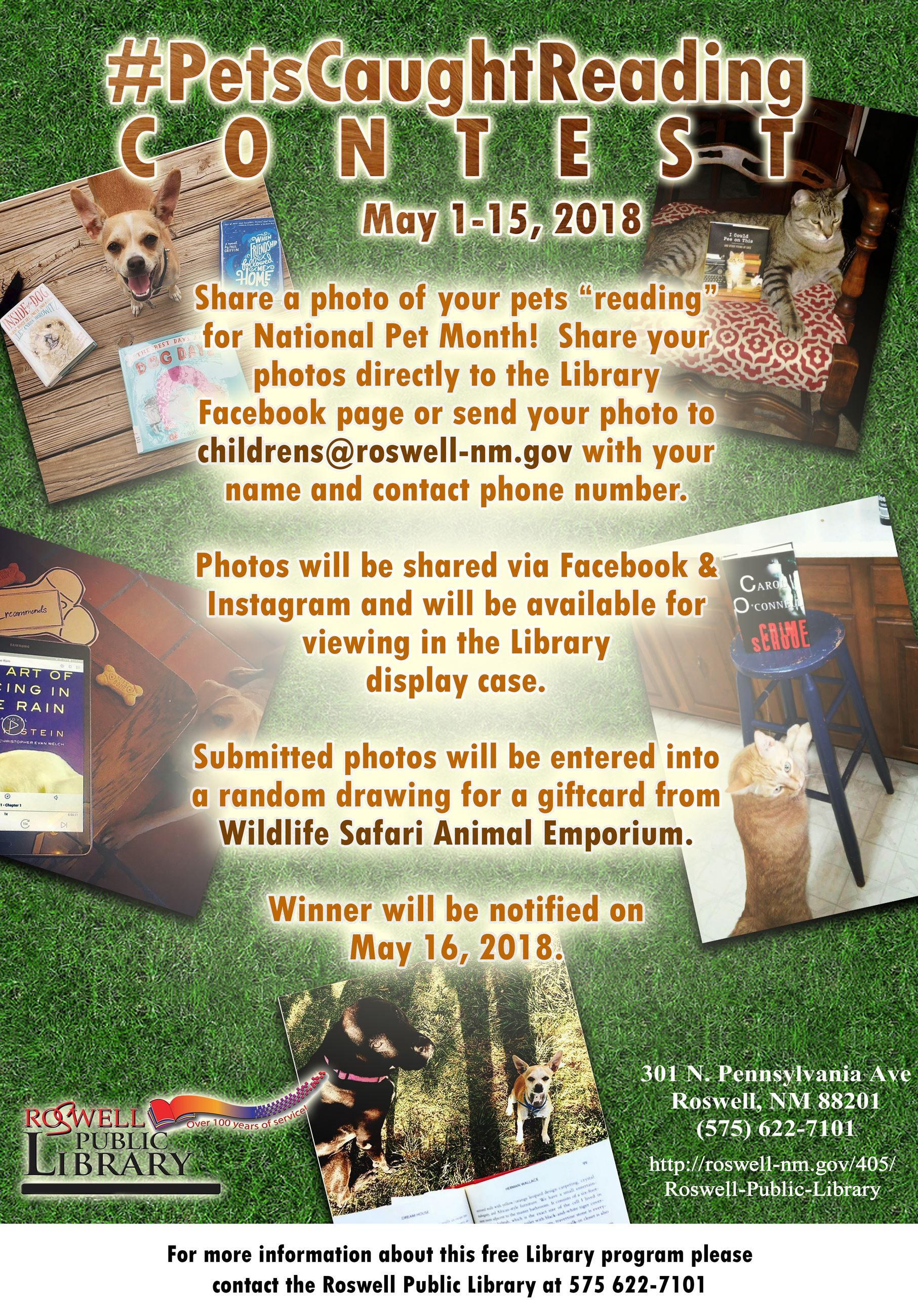 May Pets Caught Reading Contest