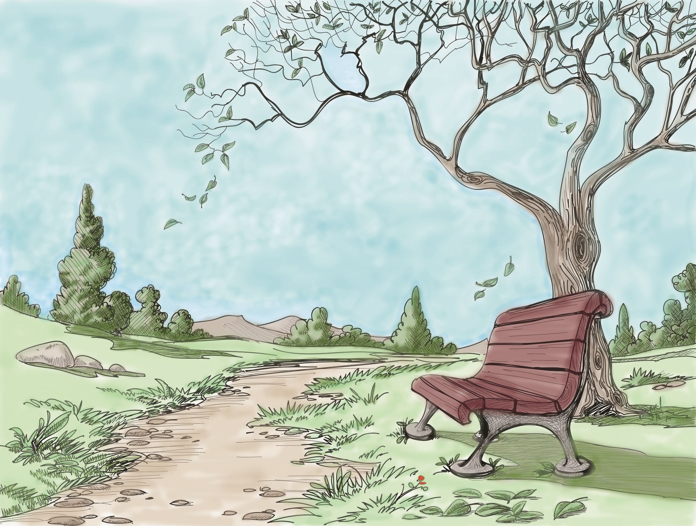 bench drawing color
