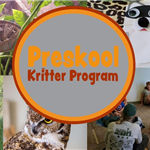 Preskool Kritter Program