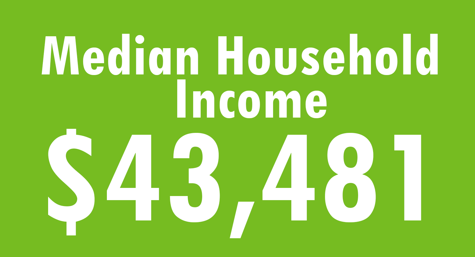 Infographic on Household Income in Roswell