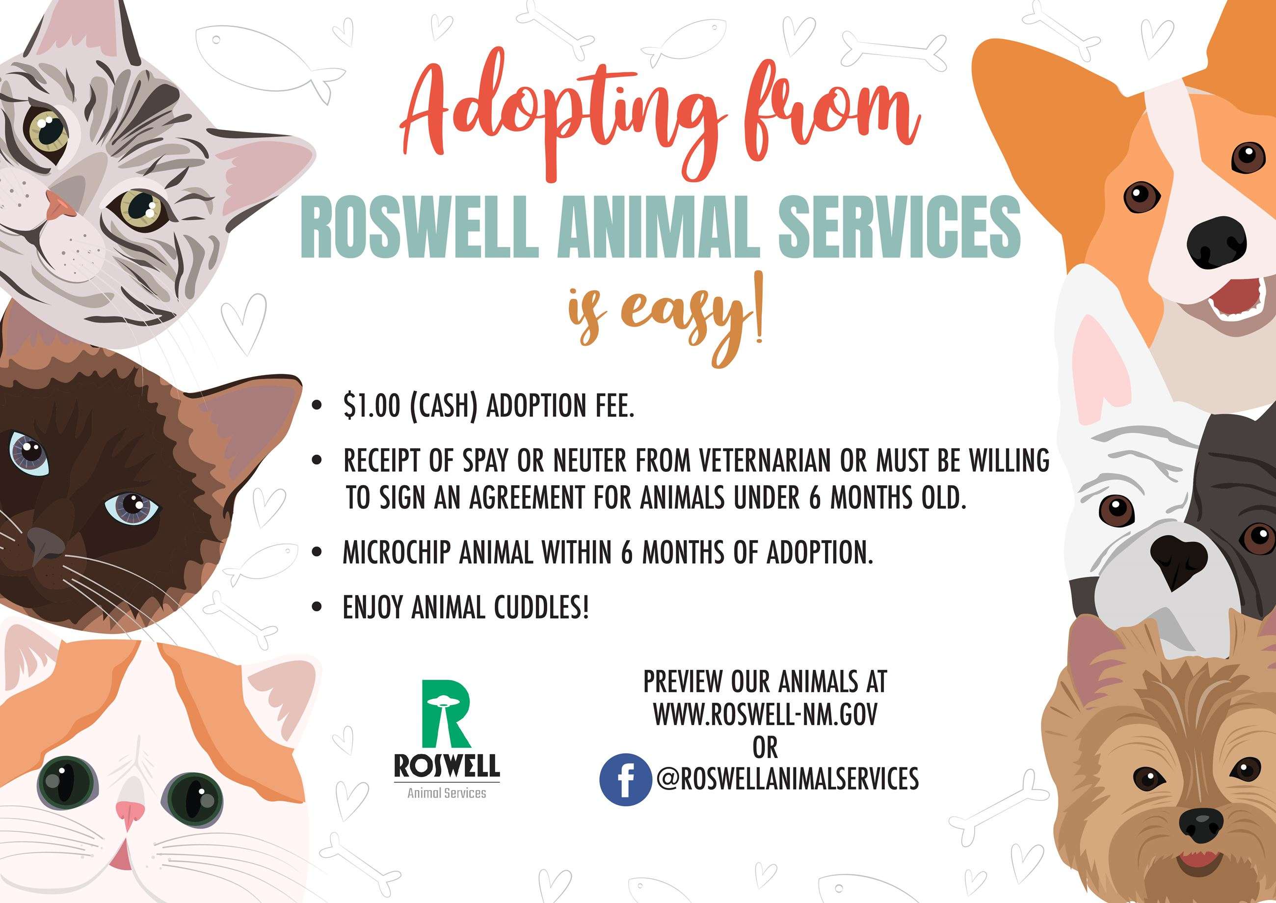 Info Graphic explaining how to adopt with Roswell Animal Services